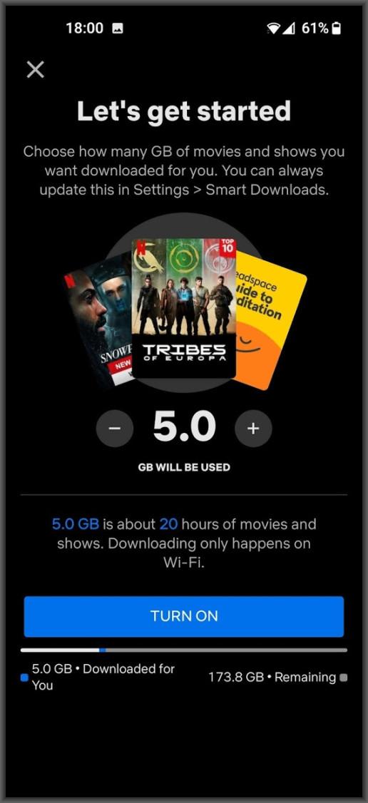 Netflix Downloads for you setup